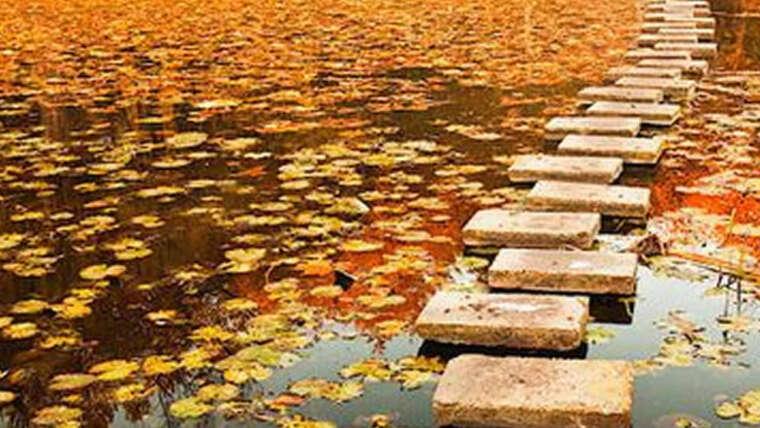 Dharma: meditación guiada
