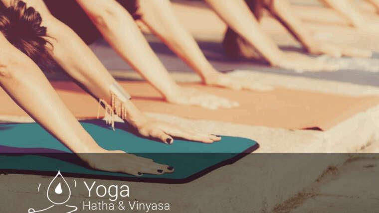 Vuelven las clases de YOGA presenciales!