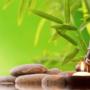 Ciclo de meditación: Corazón de Budha